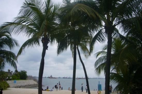 เกาะเซนโตซา, สิงคโปร์: ...海灘ar..>3<..woo...