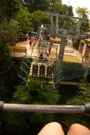 เกาะเซนโตซา, สิงคโปร์: ...得碌柱...又無安全帶...望下面真係有d 驚...驚會無端端跌左落去...=u=\...哈...