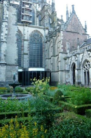 อูเทรคต์, เนเธอร์แลนด์: inside the Utrecht university garden :)