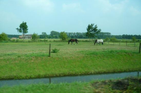 อูเทรคต์, เนเธอร์แลนด์: on the way back to Utrecht