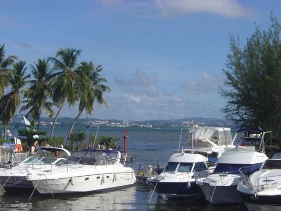 มาร์ตินีก: marina de la pointe du bout