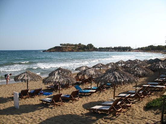 Ammos Hotel: Beach of the hotel with sunbeds! Our favorite!