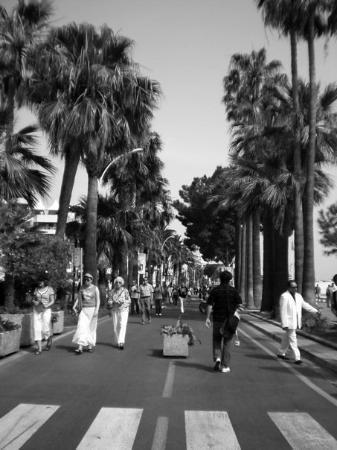 คานส์, ฝรั่งเศส: Cannes