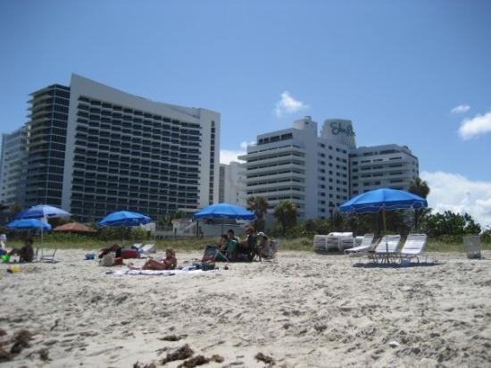 ไมอามี่ีบีช, ฟลอริด้า: Miami Beach