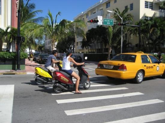 ไมอามี่ีบีช, ฟลอริด้า: cerca a Miami Beach