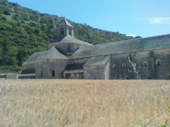 Aix-en-Provence, Francia: Abbaye de Sénanque et son champ de blé noir...