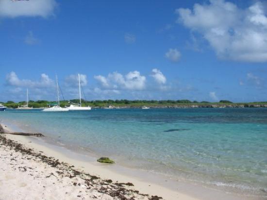 ปวงต์-อา-ปิตร์, กวาเดอลูป: Petite-Terre