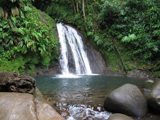 Parc National, Guadeloupe: La cascade ax écrevisses
