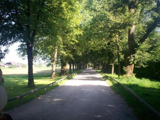 ซาลซ์บูร์ก, ออสเตรีย: On the Sound of Music Tour - the road to the house