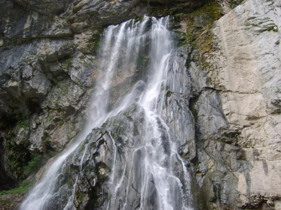 Pitsunda ภาพถ่าย