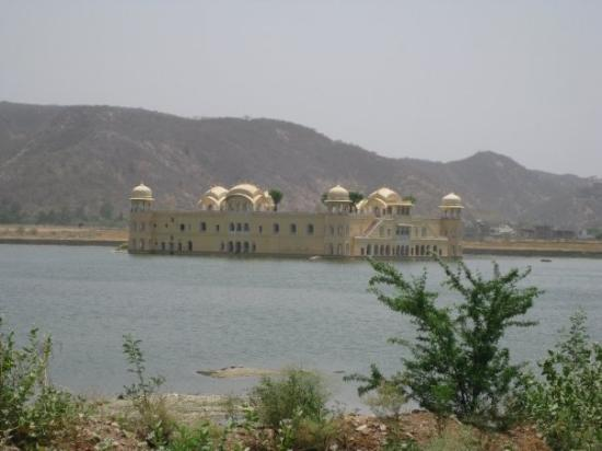 Jal Mahal: The floating Palace