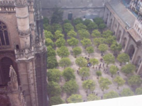 เซบียา, สเปน: Vista panorámica desde la Giralda