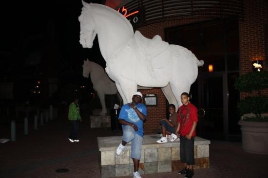 Snook, AJ & Guru @ Mall of Georgia Mall