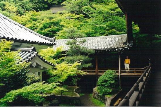 เกียวโต, ญี่ปุ่น: Tokyo Japan