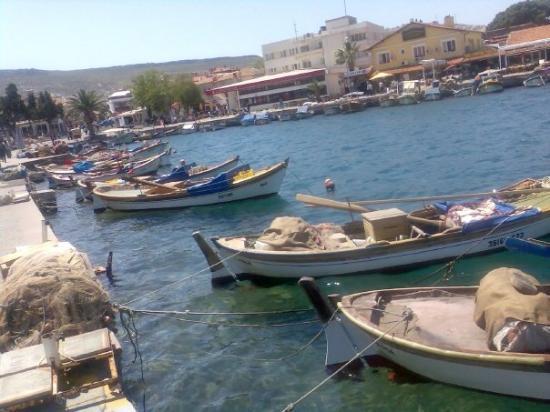 Foca, ตุรกี: Foça görünüm