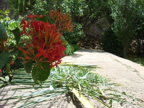 Mandore Gardens ภาพถ่าย