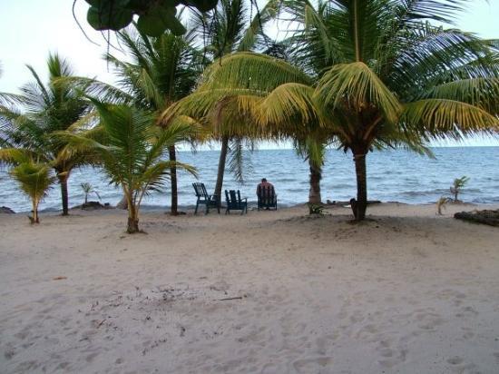 Blue Crab Resort ภาพถ่าย