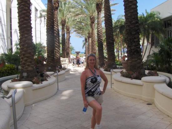 ไมอามี่, ฟลอริด้า: In the hotel courtyard