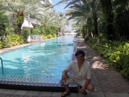 ไมอามี่, ฟลอริด้า: By the hotel pool