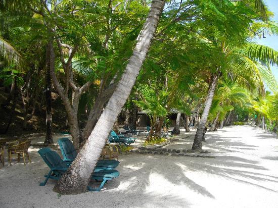 Wananavu Beach Resort: The beach