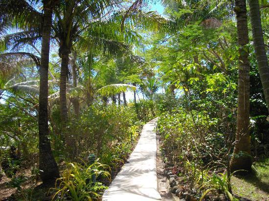 Wananavu Beach Resort: Heaven