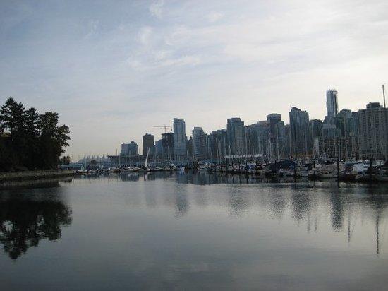 Centro di Vancouver: Stanley Park facing DT