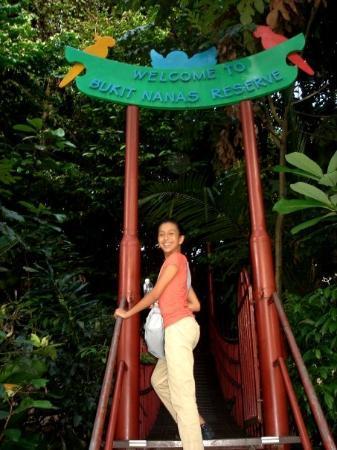 กัวลาลัมเปอร์, มาเลเซีย: Bukit Nanas Reserve