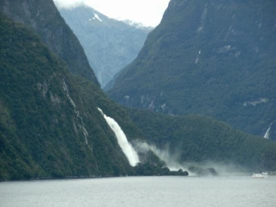 Fiordland National Park ภาพถ่าย