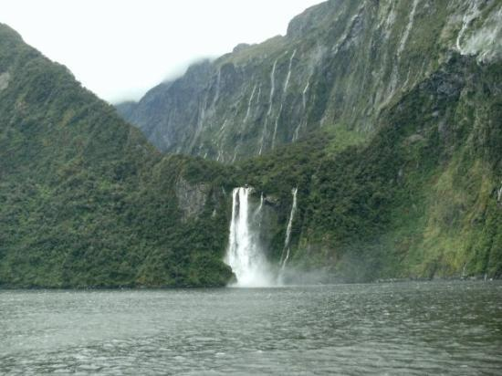 Fiordland National Park ภาพถ่าย