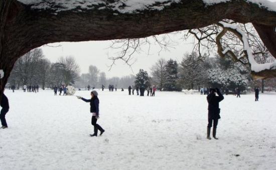 อ๊อกซฟอร์ด, UK: University Parks