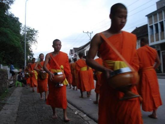 หลวงพระบาง, ลาว: La processione dei monaci che raccolgono le offerte in ciboo. ore 5.30 di mattina, Luang Prabang