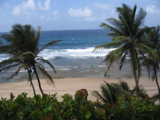 Bathsheba Beach: Really - why DID we come home!?