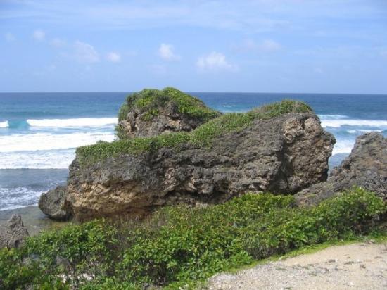Bathsheba Beach: Big rocks at Bathsheba.