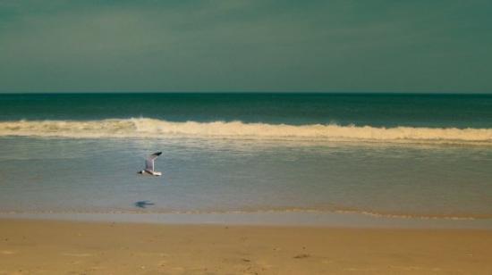 คิตตี ฮอว์ก, นอร์ทแคโรไลนา: Kitty Hawk beach