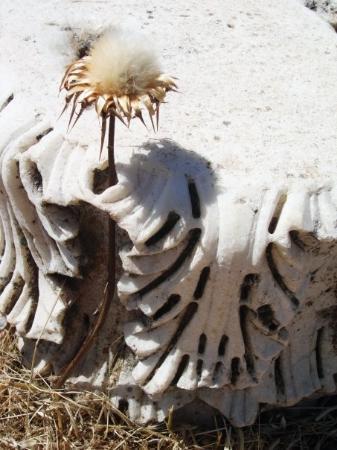 ปามุคคาเล, ตุรกี: Hierapolis