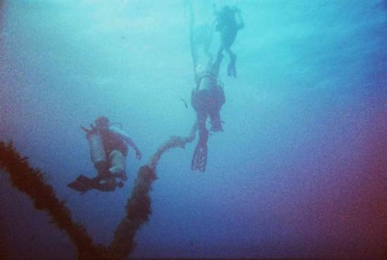 Roatan (เกาะโรอาทาน), ฮอนดูรัส: Mooring line from the wreck of the Eagle