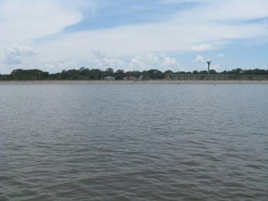 เกาะเจคิลล์, จอร์เจีย: The shoreline of Jekyll Island from where we were standing in the ocean