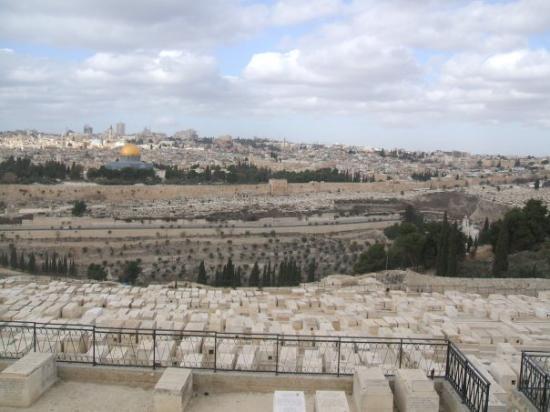 เยรูซาเล็ม, อิสราเอล: panorama di Gerusalemme: sul davanti vediamo un cimitero ebraico dove notiamo tutte le tombe eug