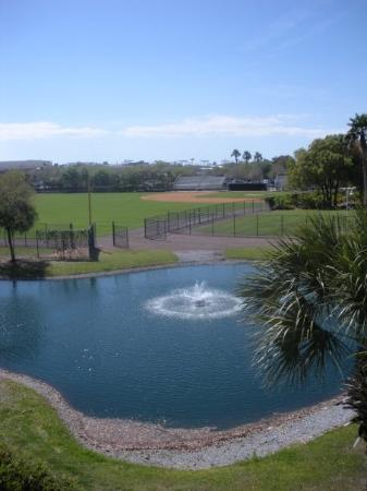 George M. Steinbrenner Field: across the street is a kmart and two trailer parks.
