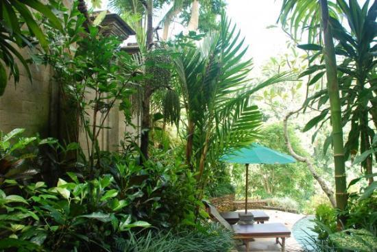 อูบุด, อินโดนีเซีย: 烏布的Royal pitamaha