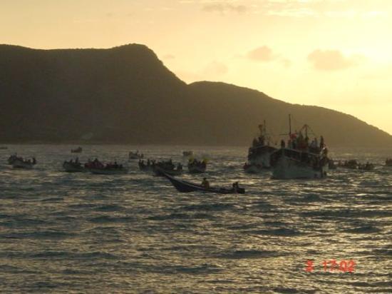 เกาะมาร์การีตา ภาพถ่าย