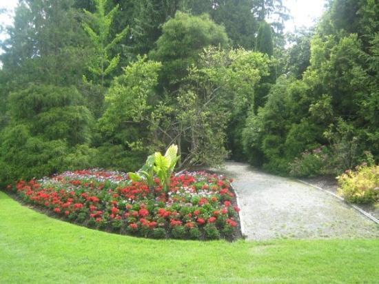 แวนคูเวอร์, แคนาดา: Salmon Creek park. Lovely!