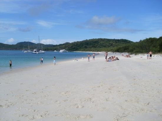 Whitsunday Island, ออสเตรเลีย: Whitehaven beach