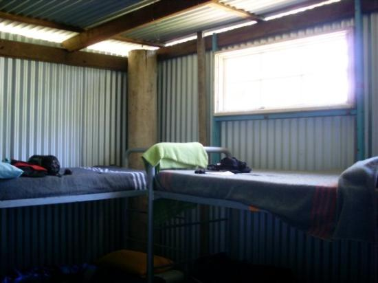 Barrington, ออสเตรเลีย: My lovely bed, in a tin shed.