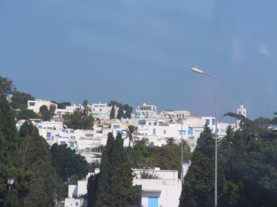 Sidi Bou Said ภาพถ่าย