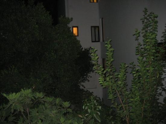 Kos Town, กรีซ: Her har da hotelsjefen lukket vinduet! Spørs nok om han merket blitzregnet, og ville se på porno