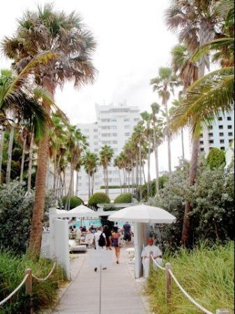 Delano South Beach Hotel: Our Hotel..The Delano