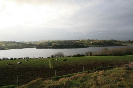 กัลเวย์, ไอร์แลนด์: ireland at the end of december.  why can't nj stay green all year round?