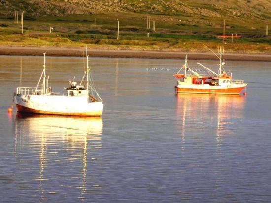 อัลตา, นอร์เวย์: barche in porto