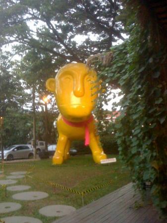 เมืองเชียงใหม่, ไทย: i Berry (Half Man Half Dog Symbol)